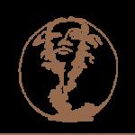 Schipp_Logo
